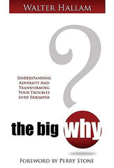 The Big Why Cover Art