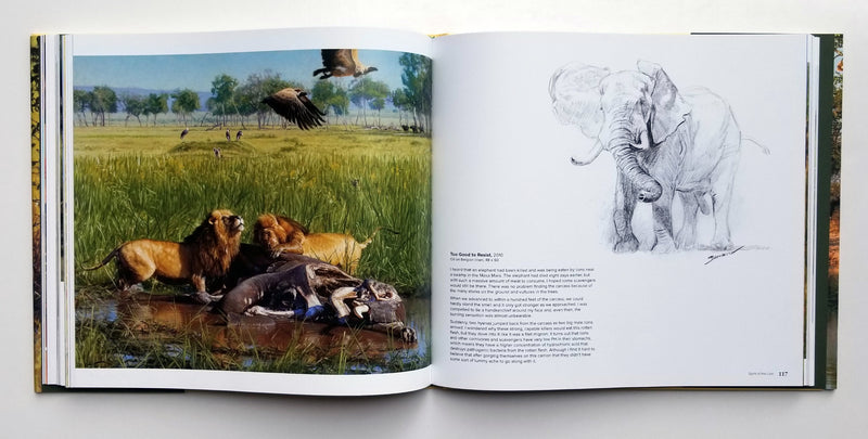 King of Beasts: A Study of the African Lion - Deluxe Edition - Signed by John Banovich