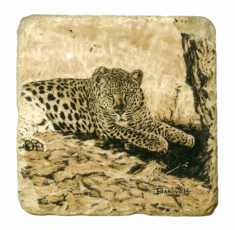 Italian Big Five Marble Coasters - Sporting Classics Store
