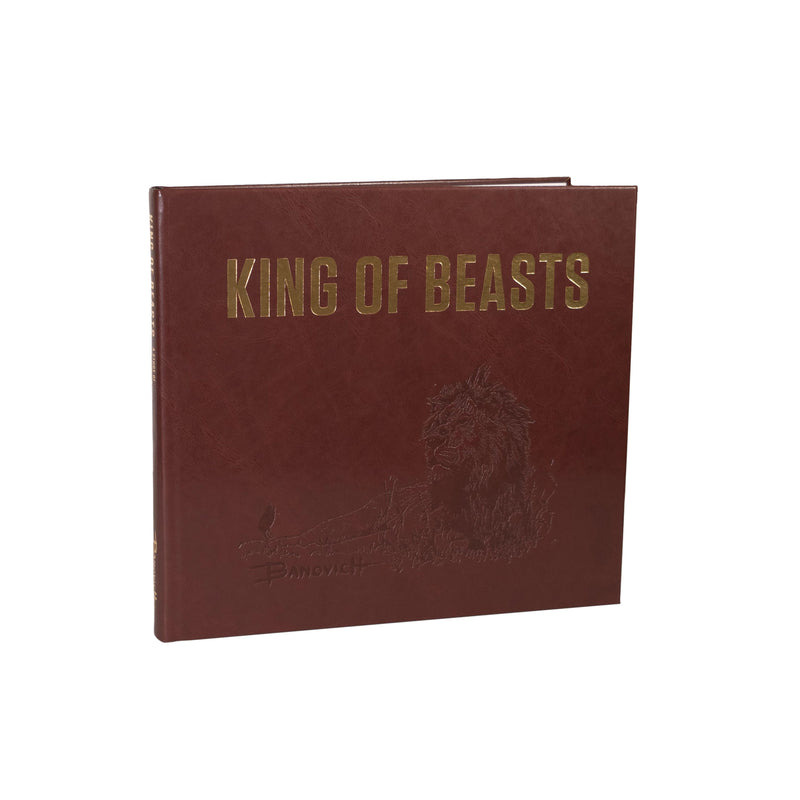 King of Beasts: A Study of the African Lion - Deluxe Edition - Sporting Classics Store