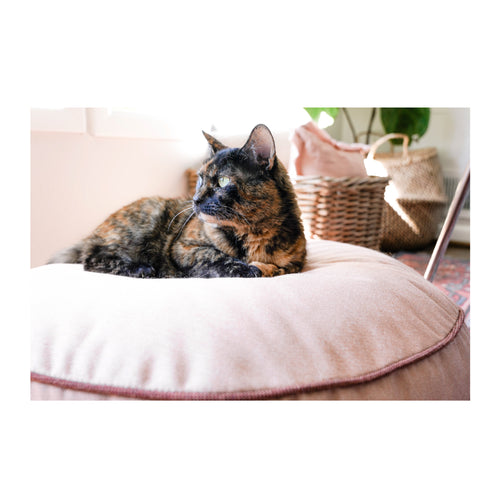 ROUND PET BED - ROSIE RETRIEVER