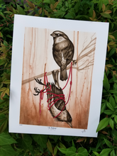 Load image into Gallery viewer, Ornithomancer Set by - v i t r i o l -