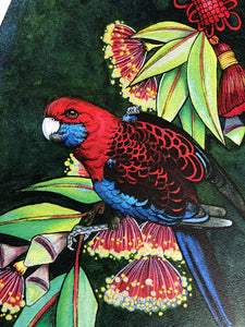 """Crimson Rosella"" FRAMED ORIGINAL PAINTING by Red Du Monde"