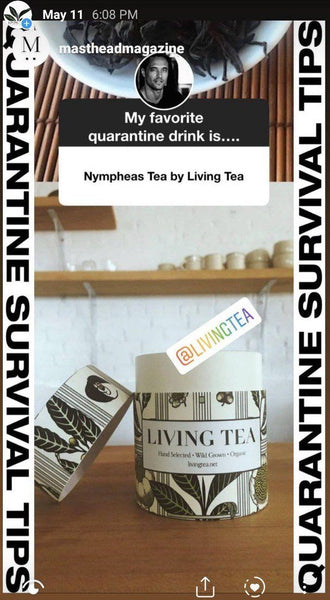 Nympheas - Wuyi Mountains Red Tea - Fujian, China 2019 - 1.5 oz.