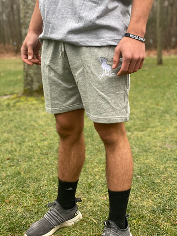 Cotton Sweat Shorts - Grey