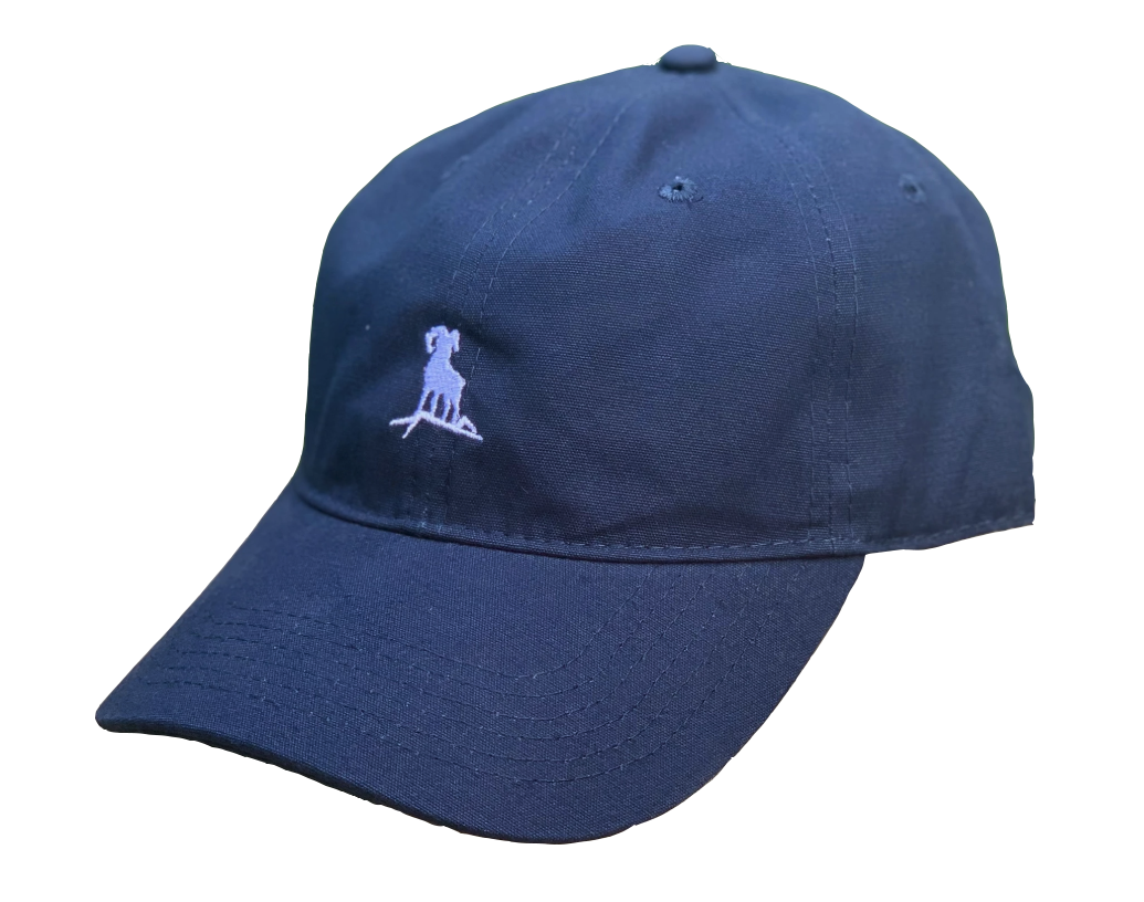 Dad Hat - Navy/White