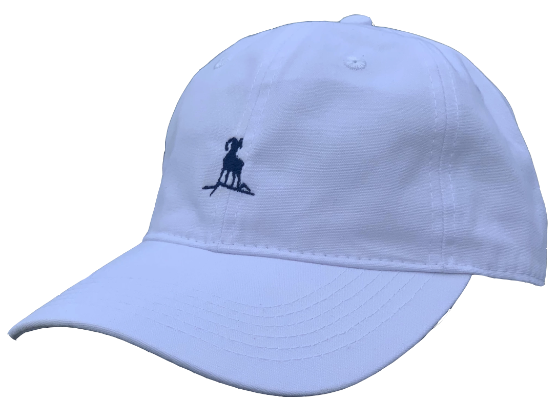 Dad Hat - White/Navy Blue