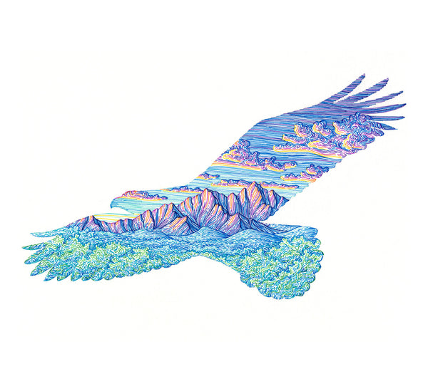 Mountain Eagle Framed Original Drawing