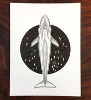 Blue Whale Original Drawing