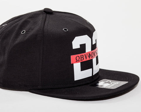 22 Obviously Snapback