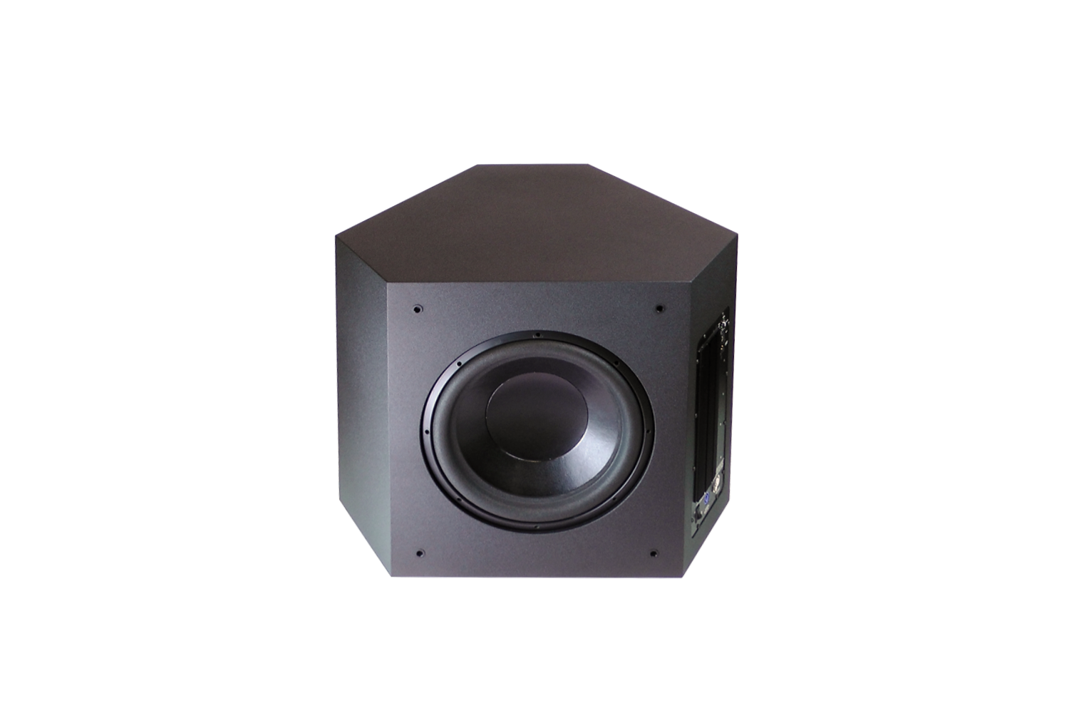 TRIAX Powered Subwoofer
