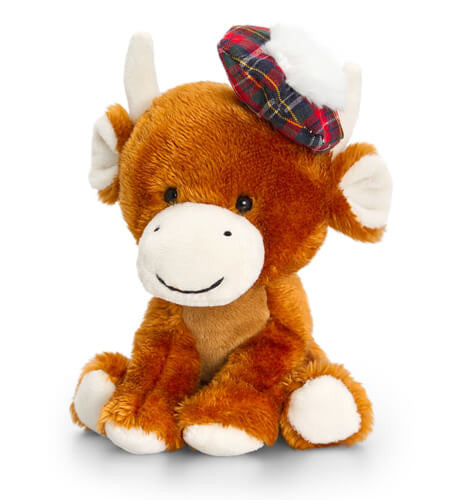 Fergus the Highland Cow