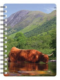 Higland Cow in River 3D Notebook
