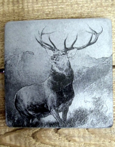 Photo Coaster - Monarch of the Glen (C3)