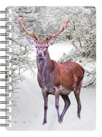 Stag 3D Notebook
