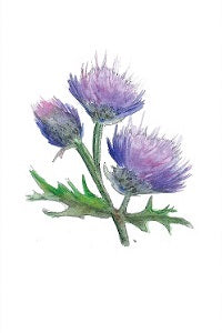 Jaggy Thistle Tea Towel
