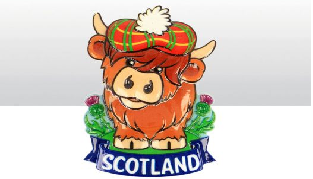 Highland Cow Spring Mounted Magnet