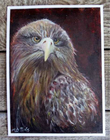 """Eaglet"" Print by Margaret Burns Miles"