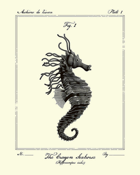 "Tracie Ching - ""The Crayon Seahorse"""