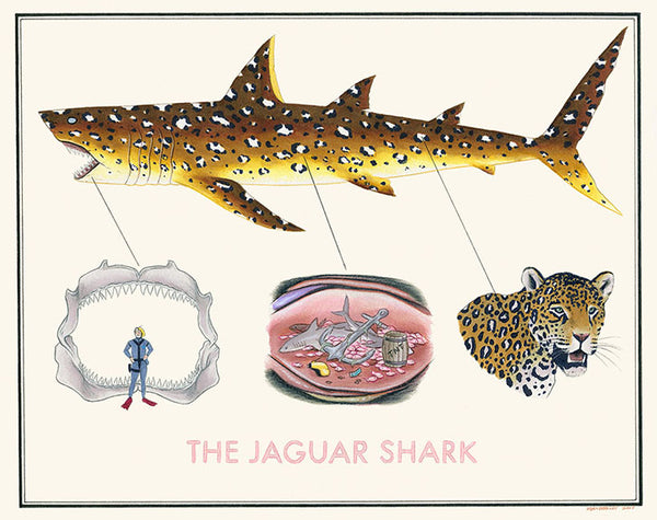 "Ryan Berkley - ""The Jaguar Shark"""