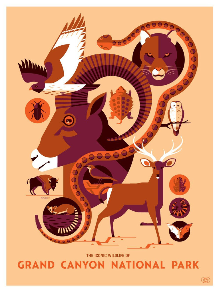 "Tom Whalen - ""Iconic Wildlife of Grand Canyon National Park"" - Spoke Art"