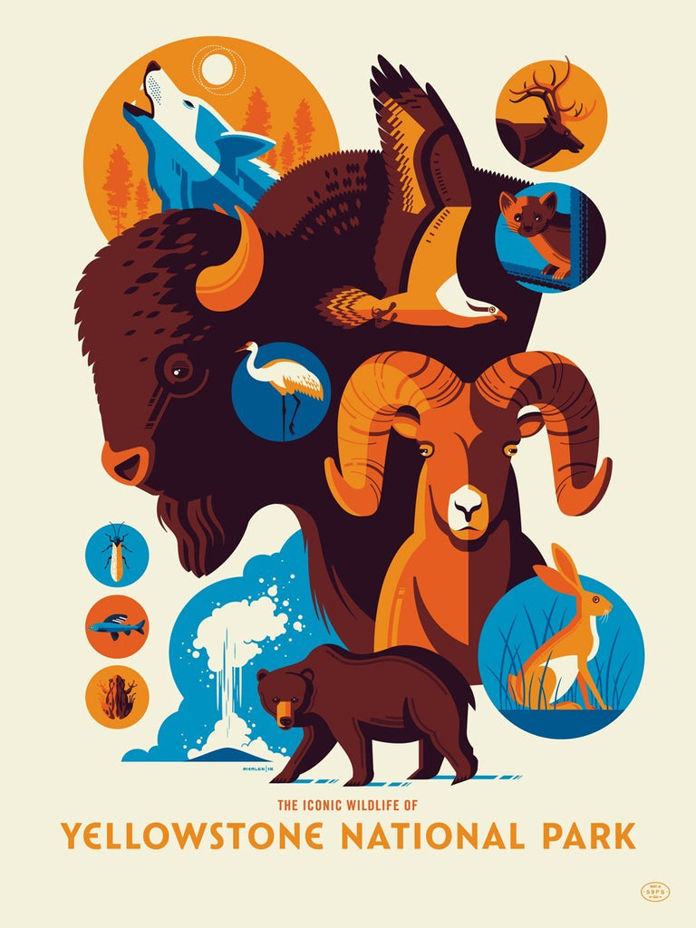 "Tom Whalen - ""Iconic Wildlife of Yellowstone National Park"" - Spoke Art"
