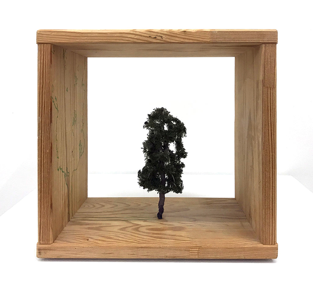 "Ellis Gallagher - ""Tree Study 9"" - Spoke Art"