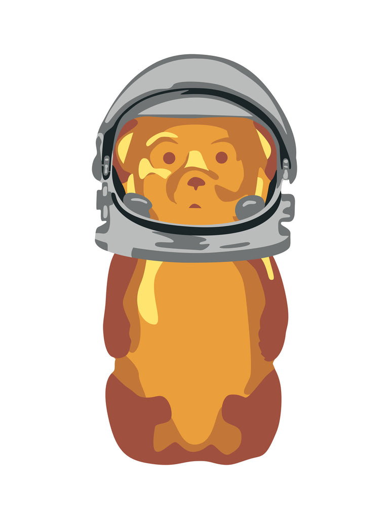 "fnnch - ""Astro Bear"" - Spoke Art"