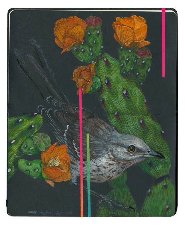 "Frank Gonzales - ""Mockingbird and Nopalito"""