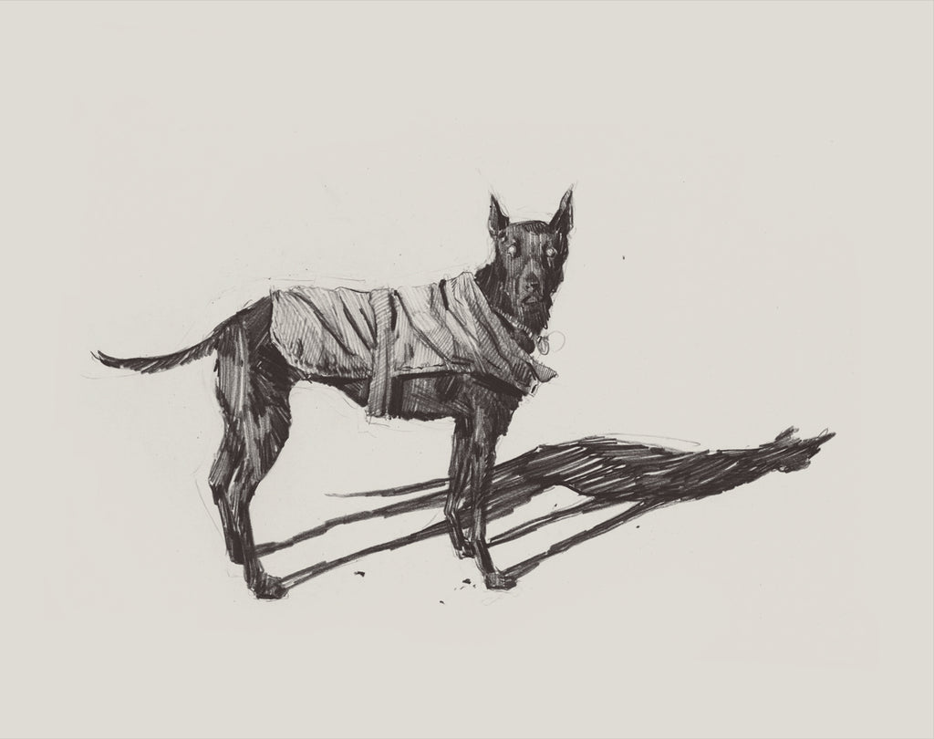 "Pat Perry - ""Untitled (dog)"" - Spoke Art"