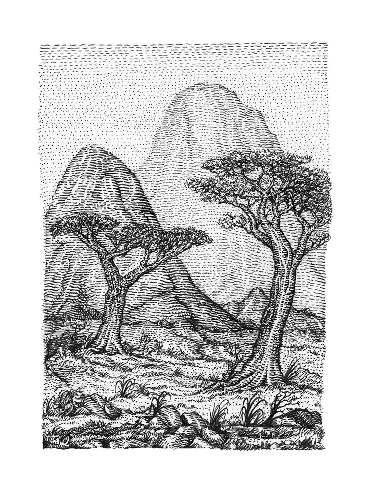 "David Welker - ""The Savannah"""