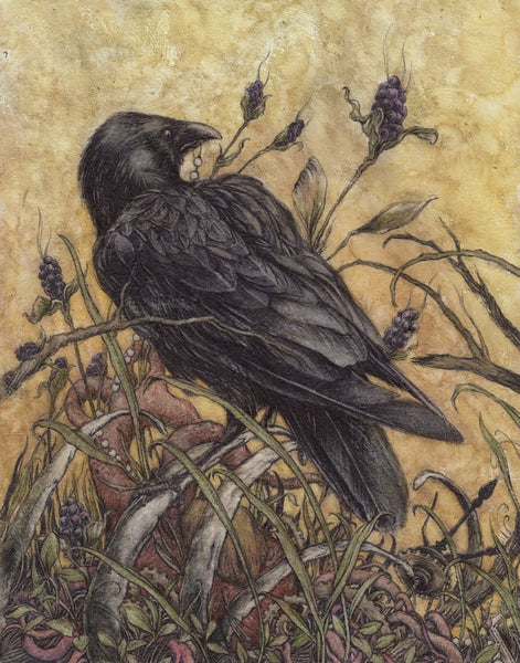 "Jeremy Hush - ""Be Still Beating Heart"""