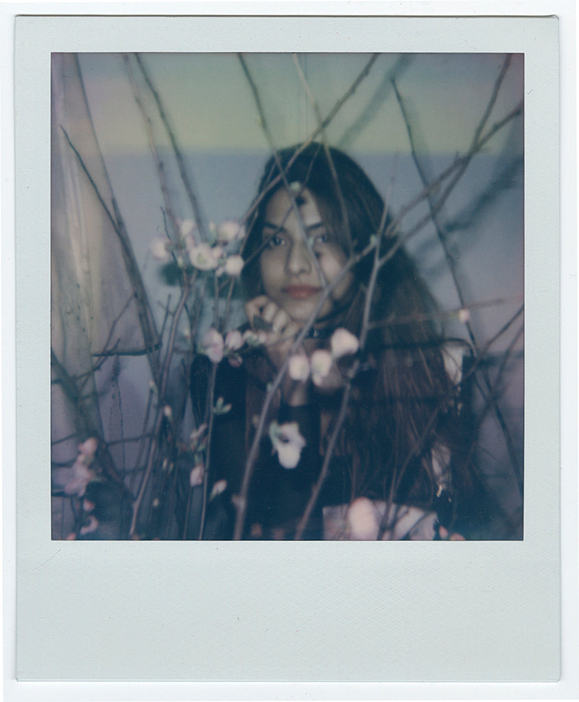 "Helice Wen - ""Polaroid No. 2"" - Spoke Art"
