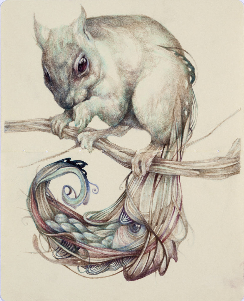 "Marco Mazzoni - ""The Chemical Squirrel"" - Spoke Art"