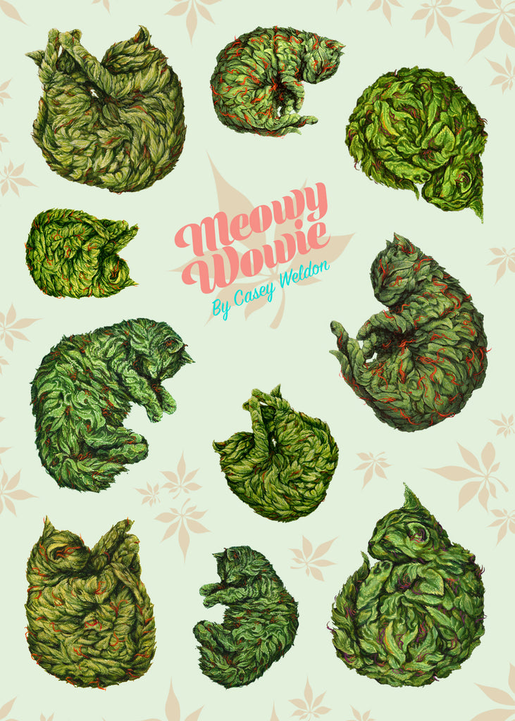 "Casey Weldon - ""Meowy Wowie Sticker Sheet"" - Spoke Art"