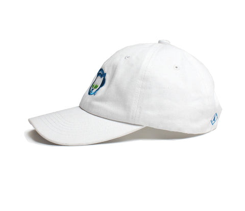 Altru Apparel Napster Logo Embroidered  Hat
