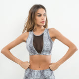 Didiopt 2018 Serpentine Yoga Bra Womens Running Vest Mesh Corsets Gym Mesh Sports Bra Womens Shorts Top Bodybuilding T3477E - Fitness Adicts