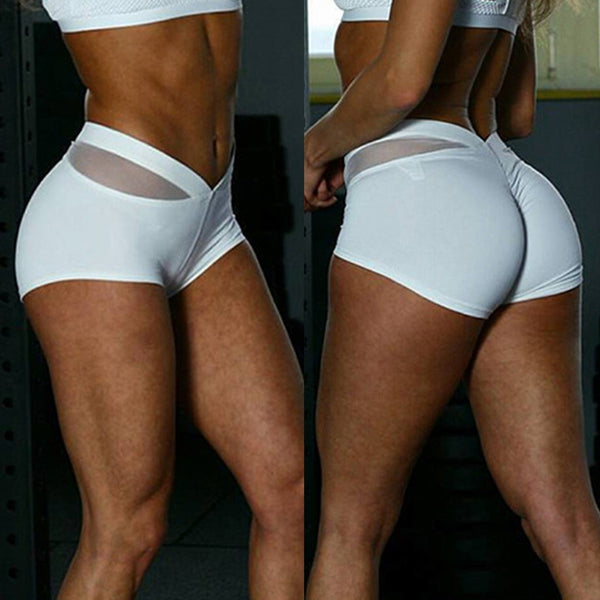 Women Sports Shorts Gym Workout Waistband Skinny Yoga Short Pants - Fitness Adicts
