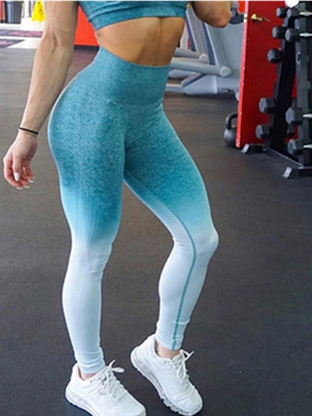 Fashion Ombre Seamless Push Up High Waist  Leggings - Fitness Adicts