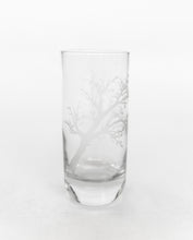 Load image into Gallery viewer, Drinking Glasses - Set of 4