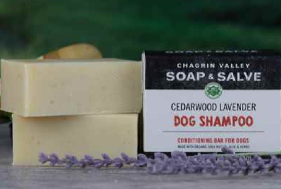 Cedarwood Lavender Dog Shampoo