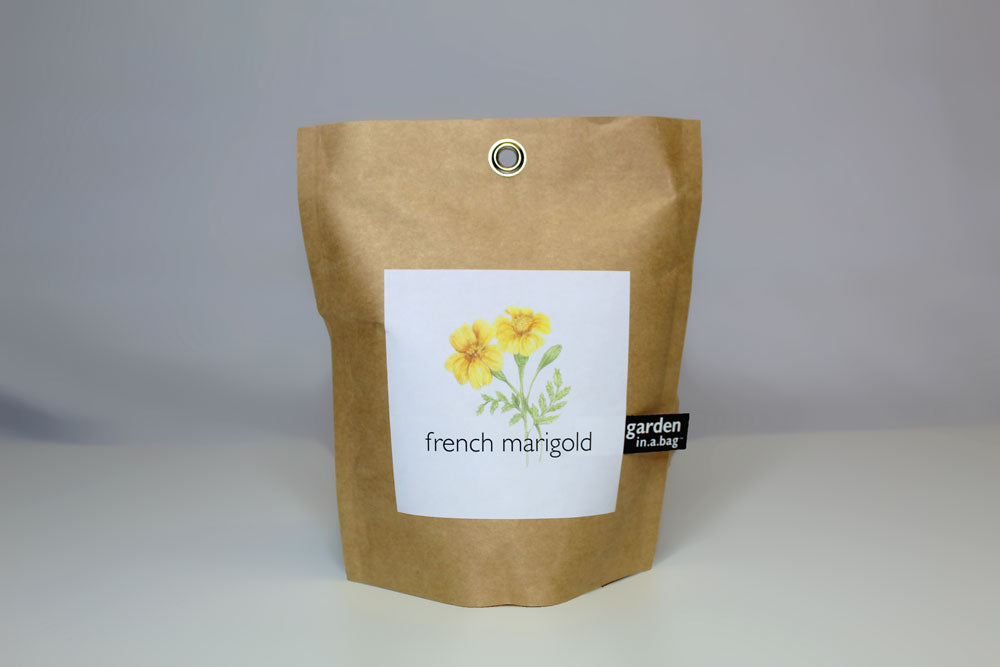 French Marigold Garden in a Bag