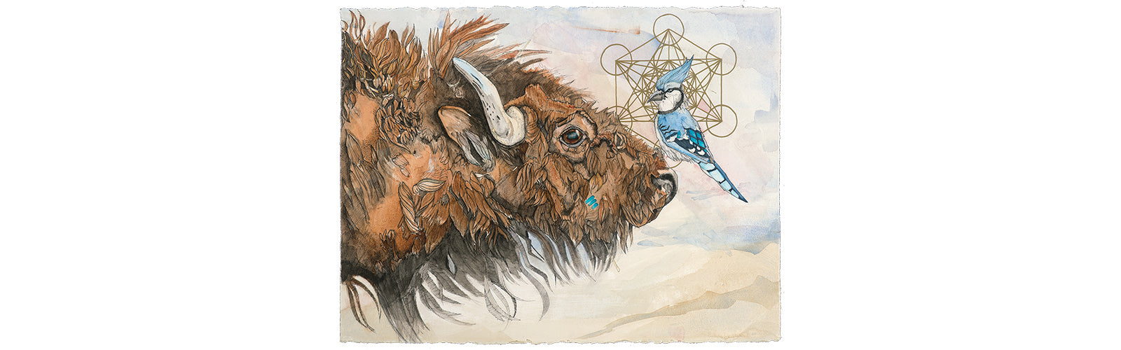 The knowledge and abundance represented in the buffalo. The clever messenger in the blue jay. They are both seekers. Metatron's Cube implies a gateway to higher vibrations. There's more to us than we know.