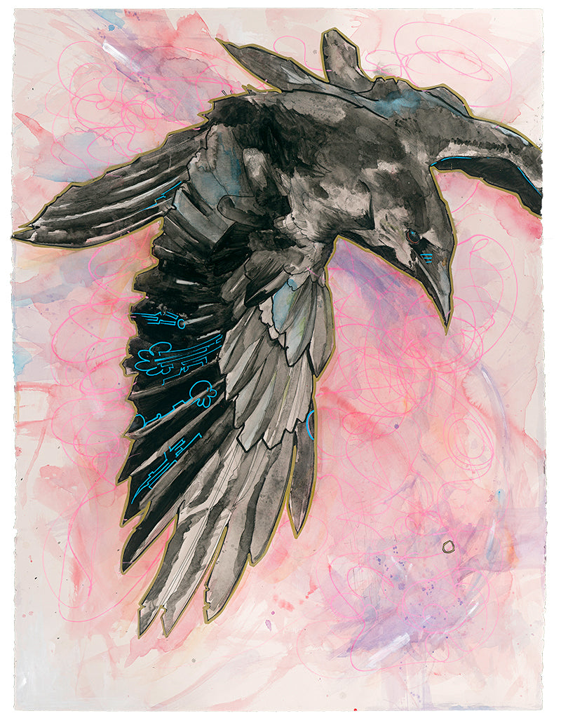 Drawn in October 2016 as a counterpoint to all the mudslinging and distortion of the election cycle news coverage. The crow soars above, seeing the big picture with clarity.