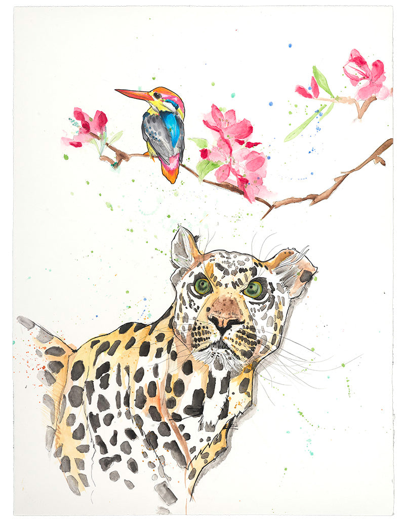 The leopard spots the gorgeous kingfisher. What happens next? Your perspective informs the story.