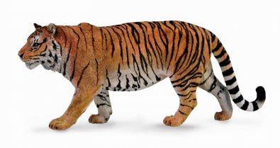 CollectA - Siberian Tiger