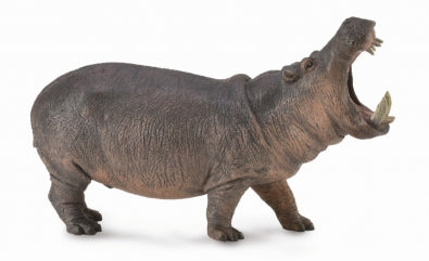 CollectA - Hippopotamus