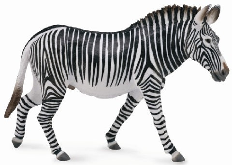 CollectA - Grevys Zebra
