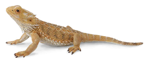 CollectA - Bearded Dragon Lizard