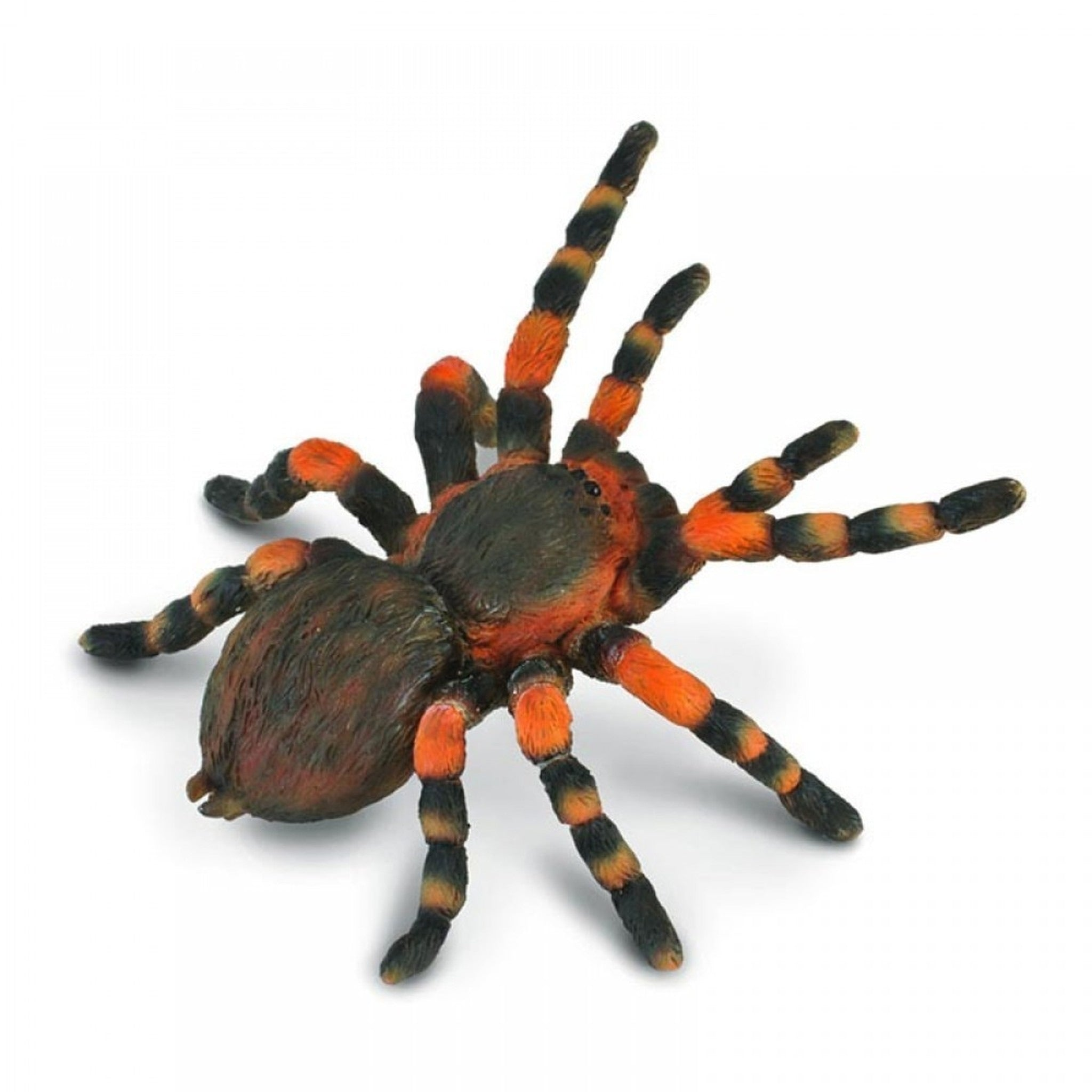 CollectA - Mexican Red Knee Tarantula